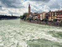 DigiMik-Verona