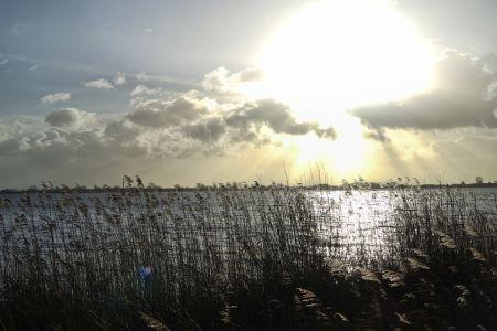 Bild Tjeukemeer