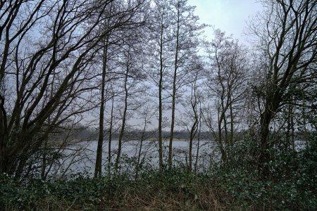 Bild Stoteler See