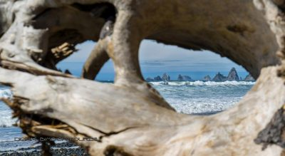 Rialto Beach Outlook