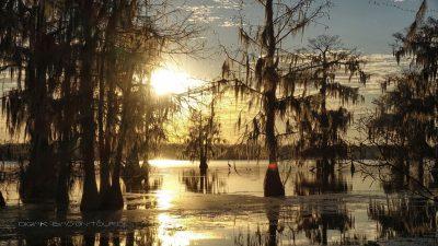 Swamp Sonnenuntergang
