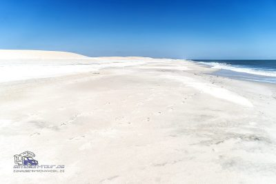 Assateague Strand