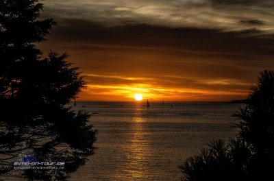 Concarneau-Sonnenuntergang