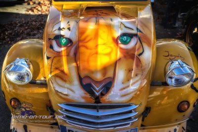 Tiger-Duck