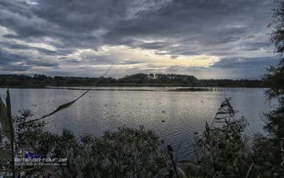Le Teich - Vogelschutzgebiet
