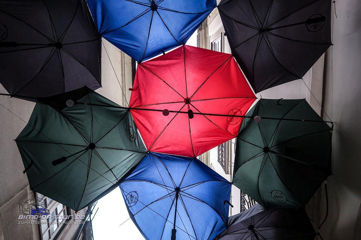 Coimbra-Regenschirme