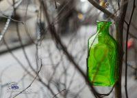 Flasche-am-Baum