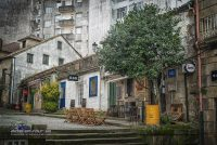 Pontevedra-Bar