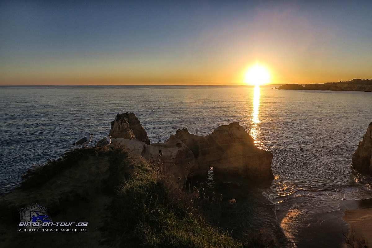 Careanos-Sonnenuntergang mit Möwen