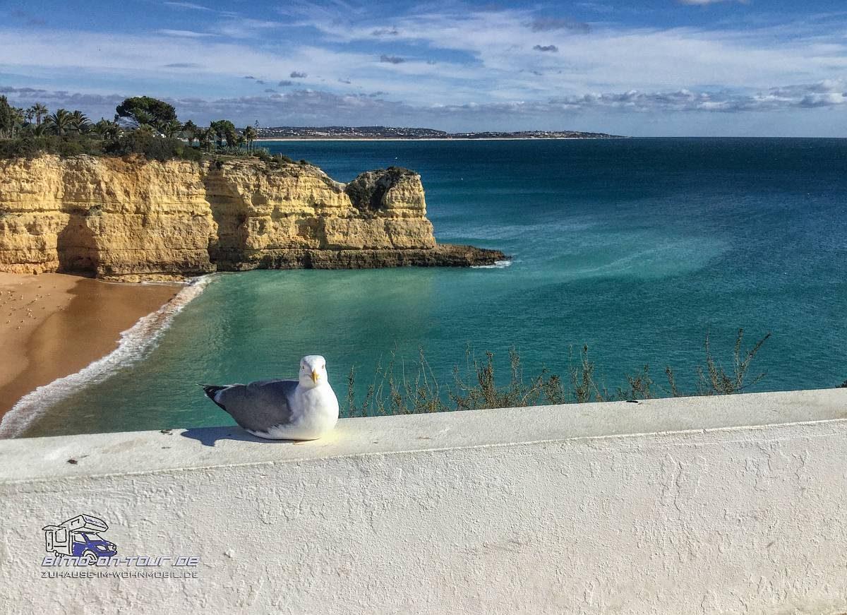 Praia Vila Lara