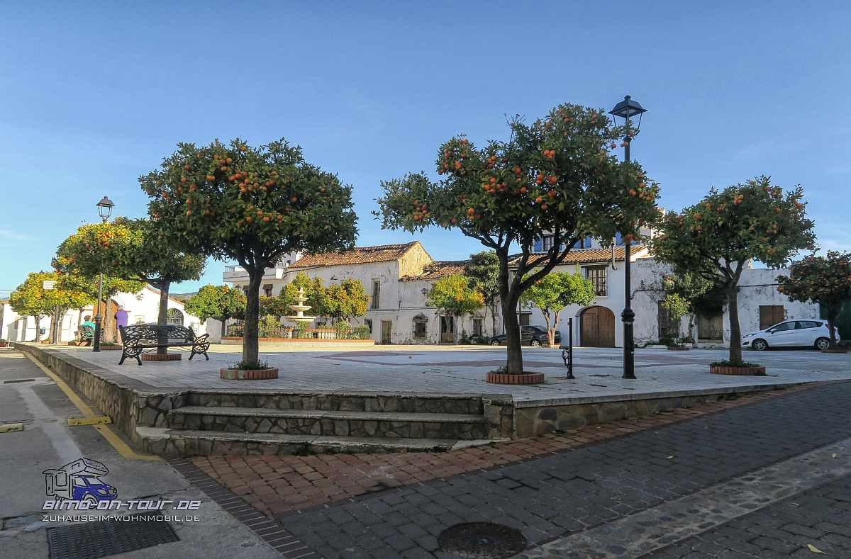 Benarraba-Plaza