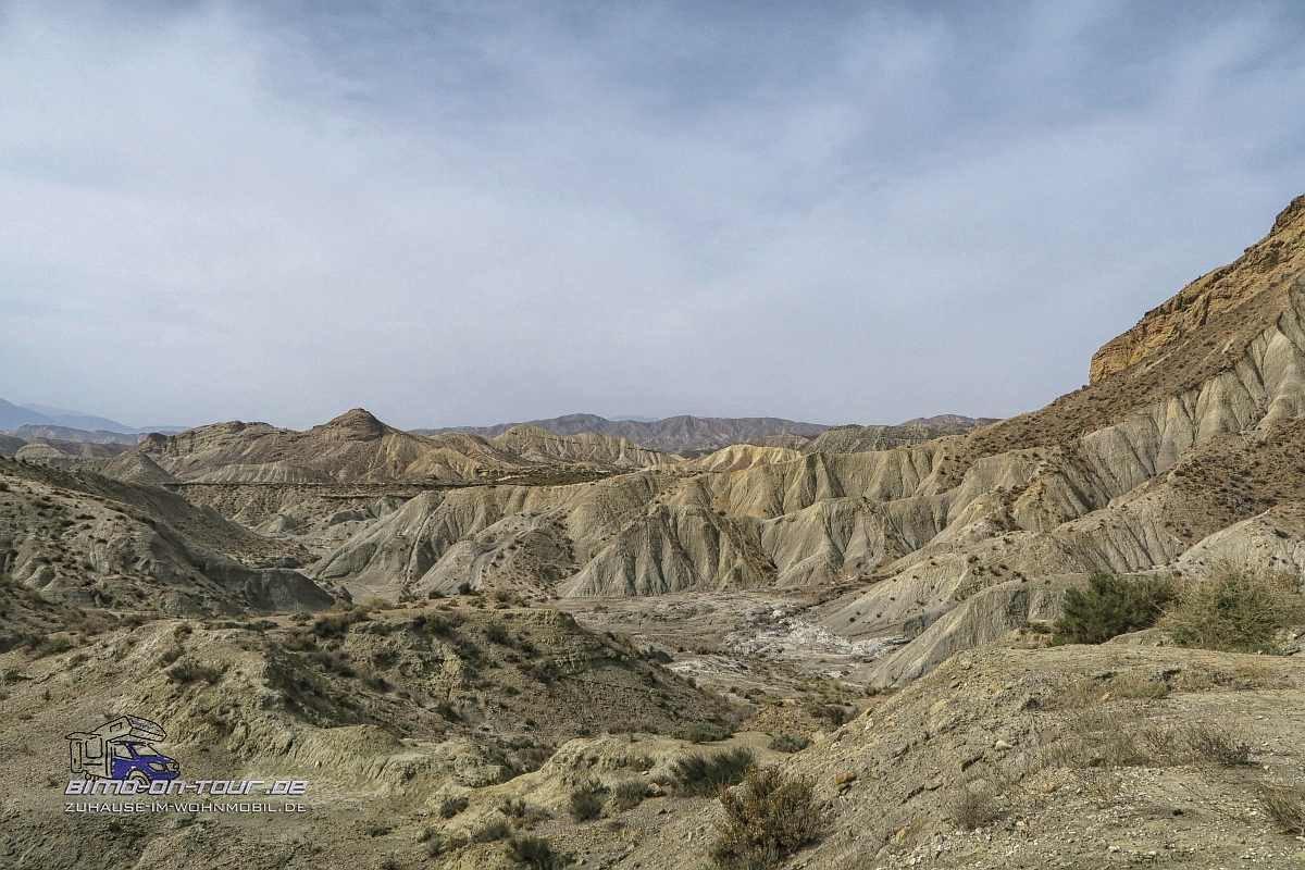Desierto / Wüste Tabernas