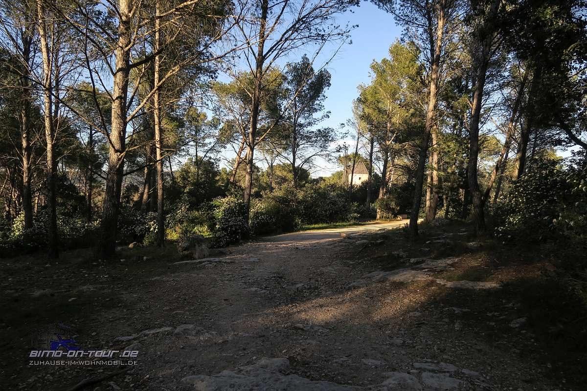 Fontvieille-Wald