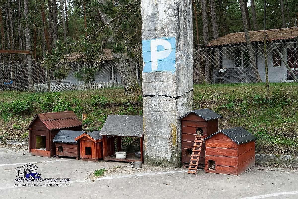Leba-Hundeparkplatz