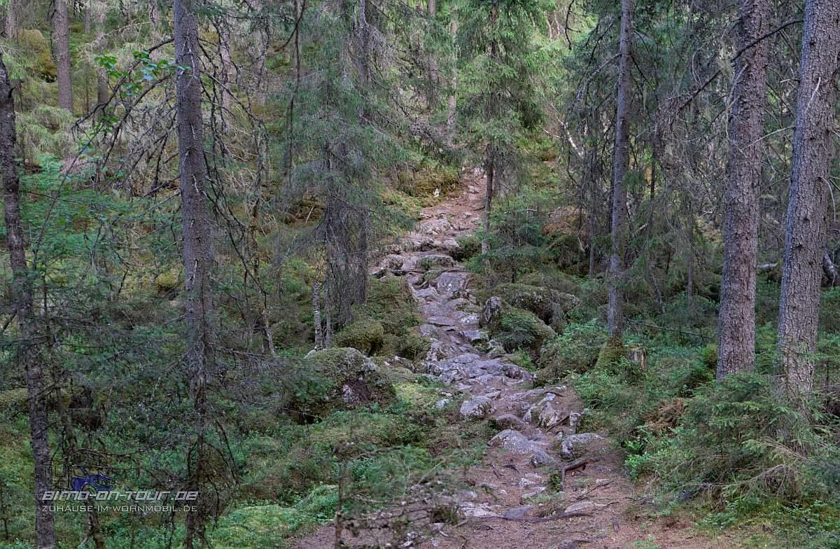 Isojärvi-Wanderweg