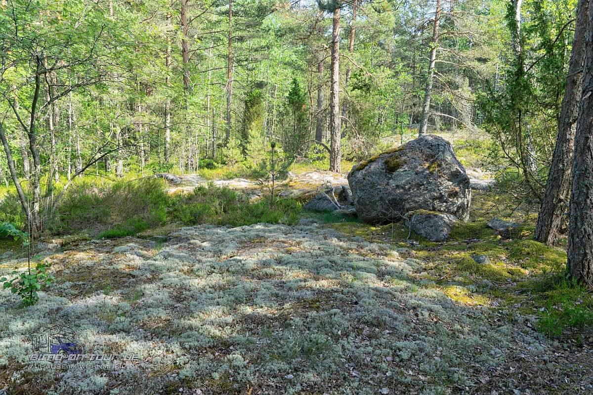 Kopparnäs-Fels