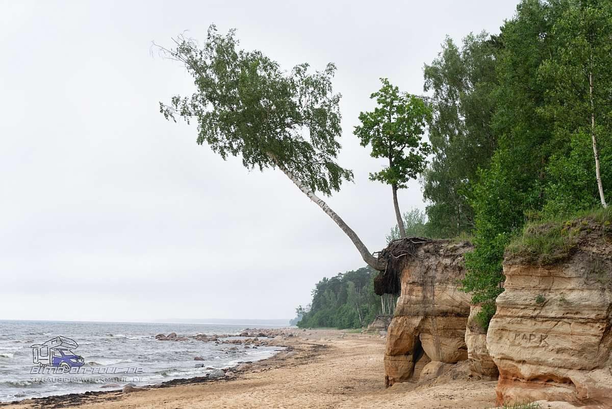 Ostsee-Sandstein-Küste