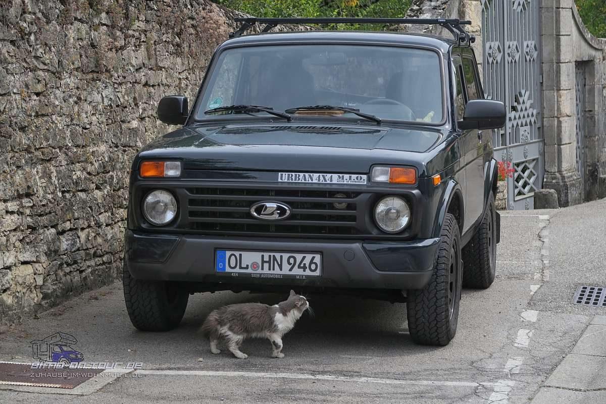 Lada mit Katze