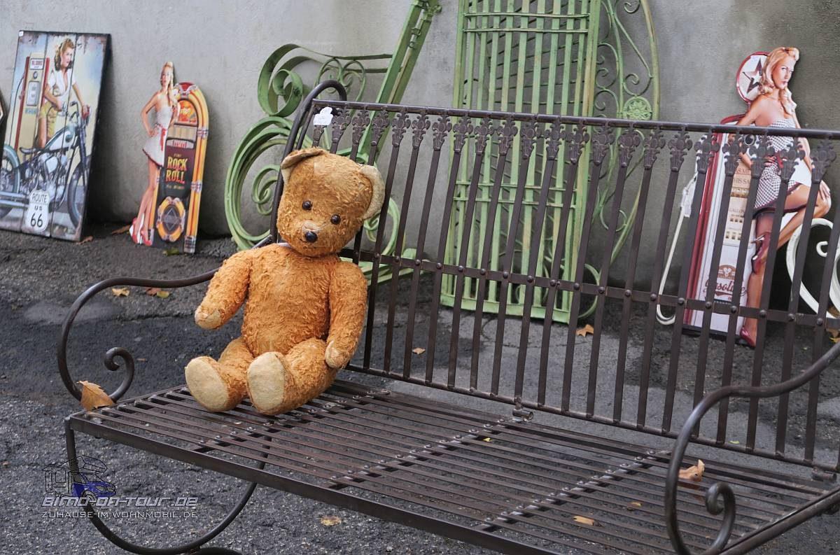 Sommières Teddy