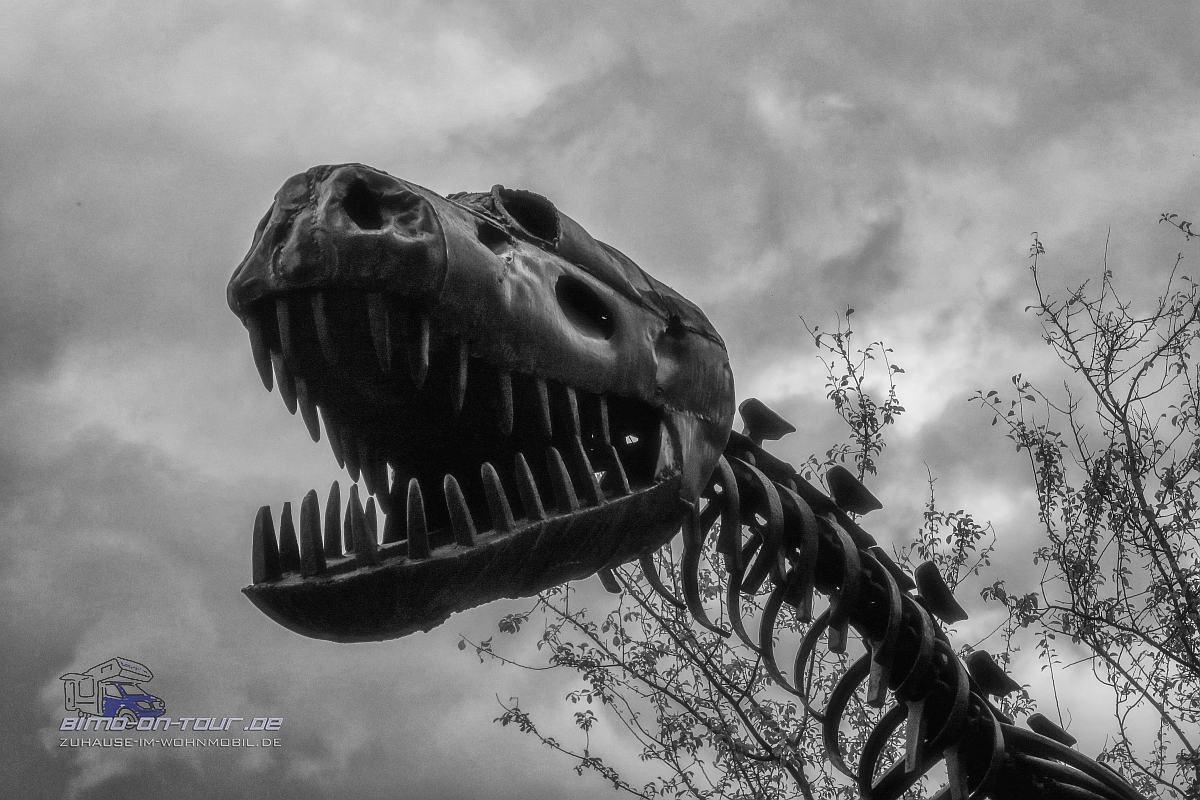 Stahlkunst - Dino