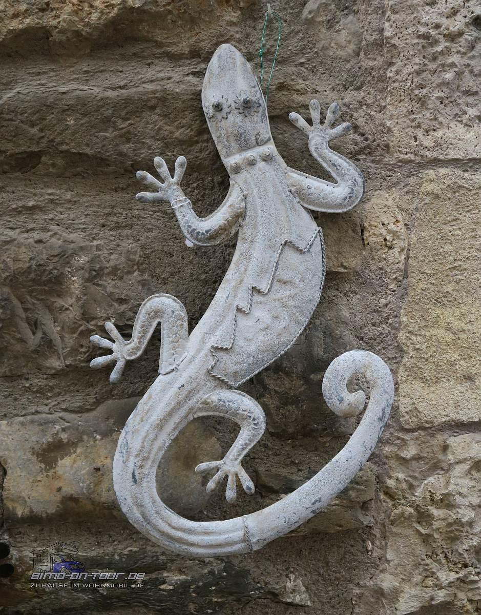 Besalú - Gecko