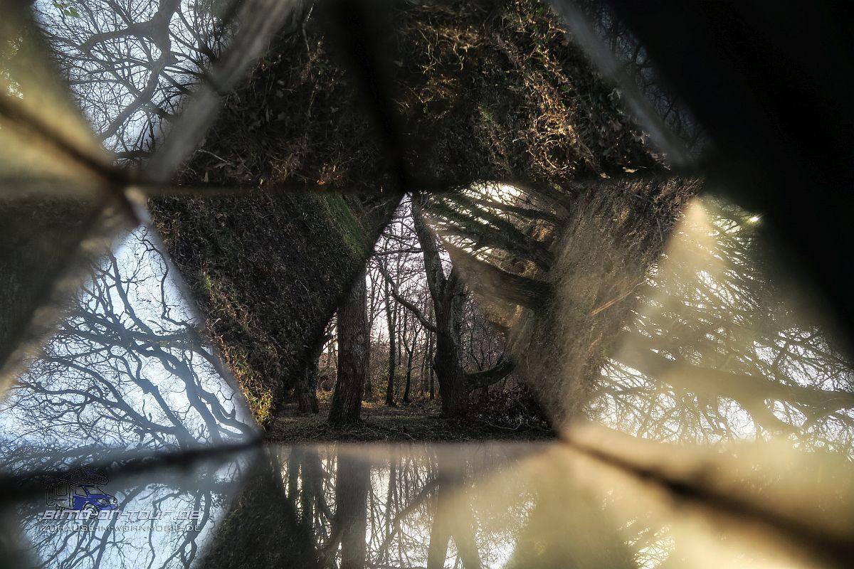 Réserve Naturelle du Courant d'Huchet-Prisma