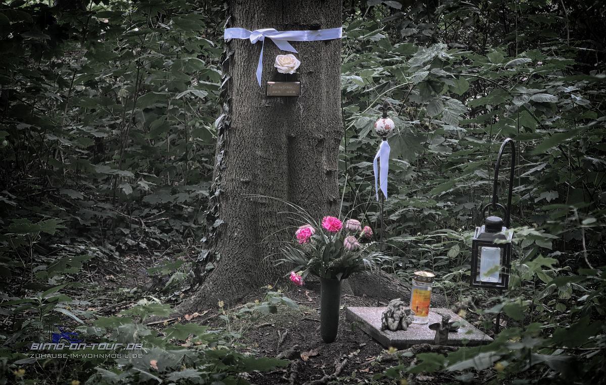 Nordfriedhof-Urnengrab