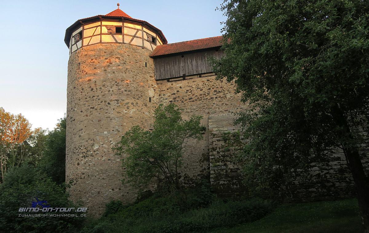 Hohenberg-Burg