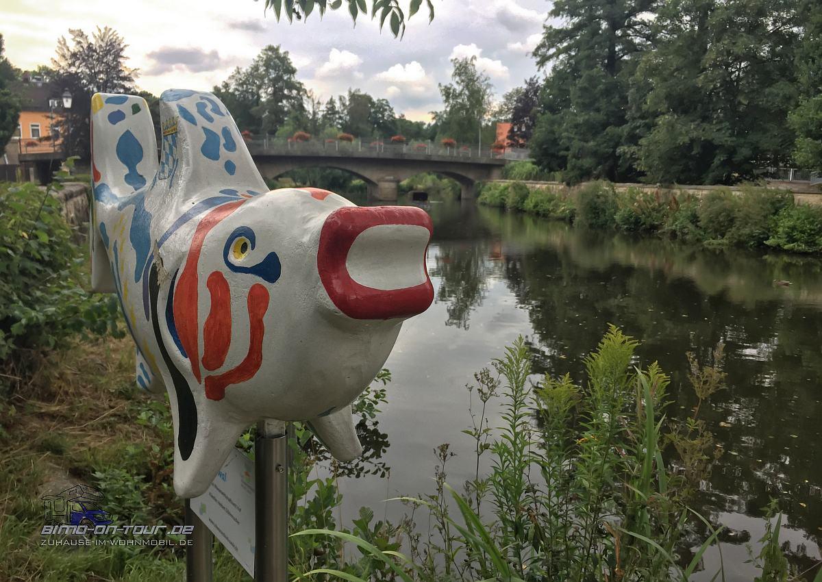 Schwarzenbach an der Saale-Fisch