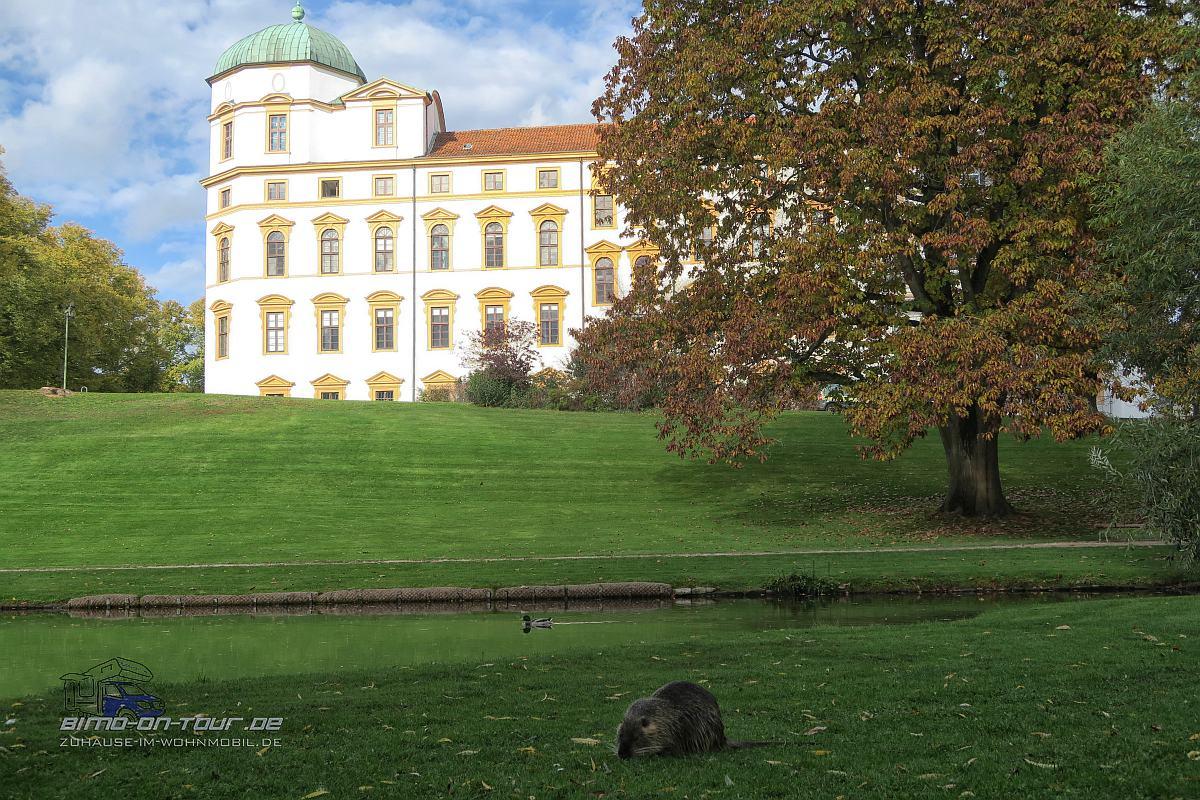 Celle-Schloss