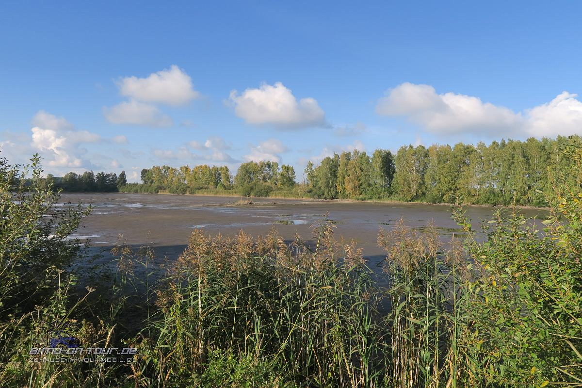 Naturschutzgebiet Fischteiche