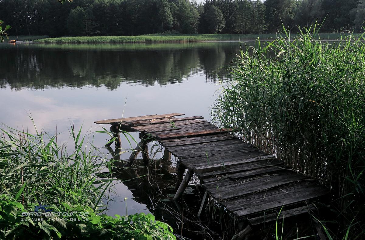 Dubeninki-MOR - Kiepojcie, Green Velo