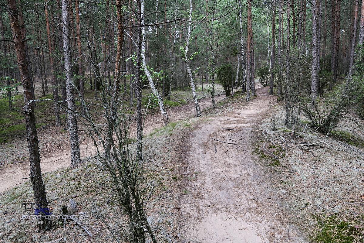 Jezioro Karsinskie-Radweg