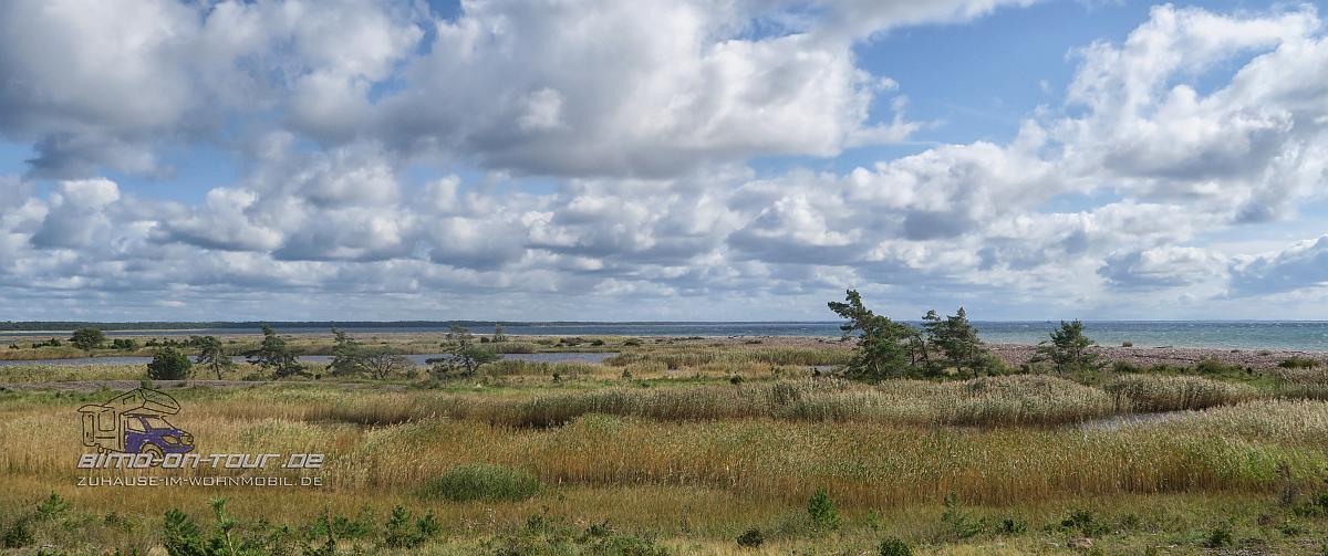 Kiipsaare-Landschaft