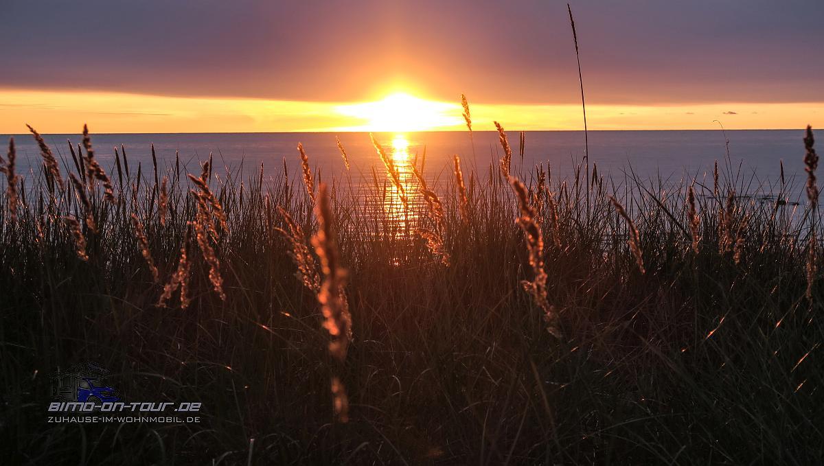 RMK Matsiranna telkimisala--Sonnenuntergang